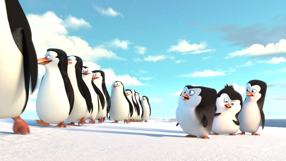 image of baby penguins of madagascar