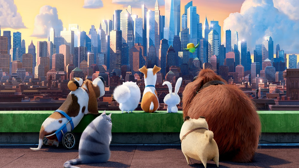 the secret life of pets movie wallpaper
