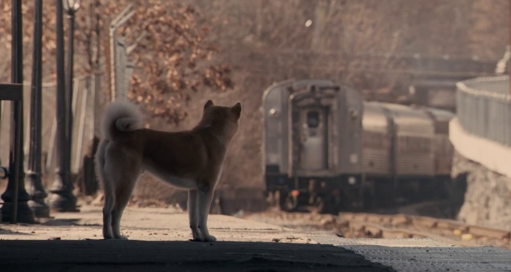 still of Hachiko or Hachi missing the train as Parker Wilson goes away
