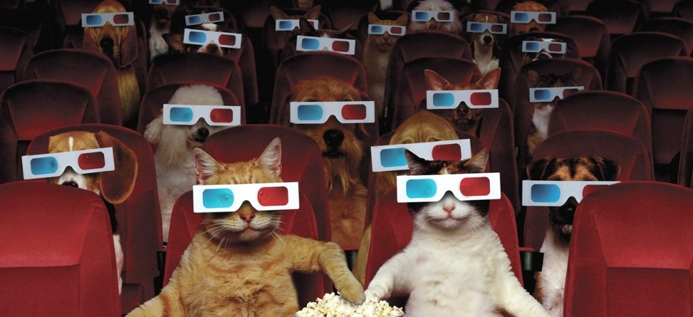 image of cats and dogs watching a 3d movie avant garde cinema avant garde collection