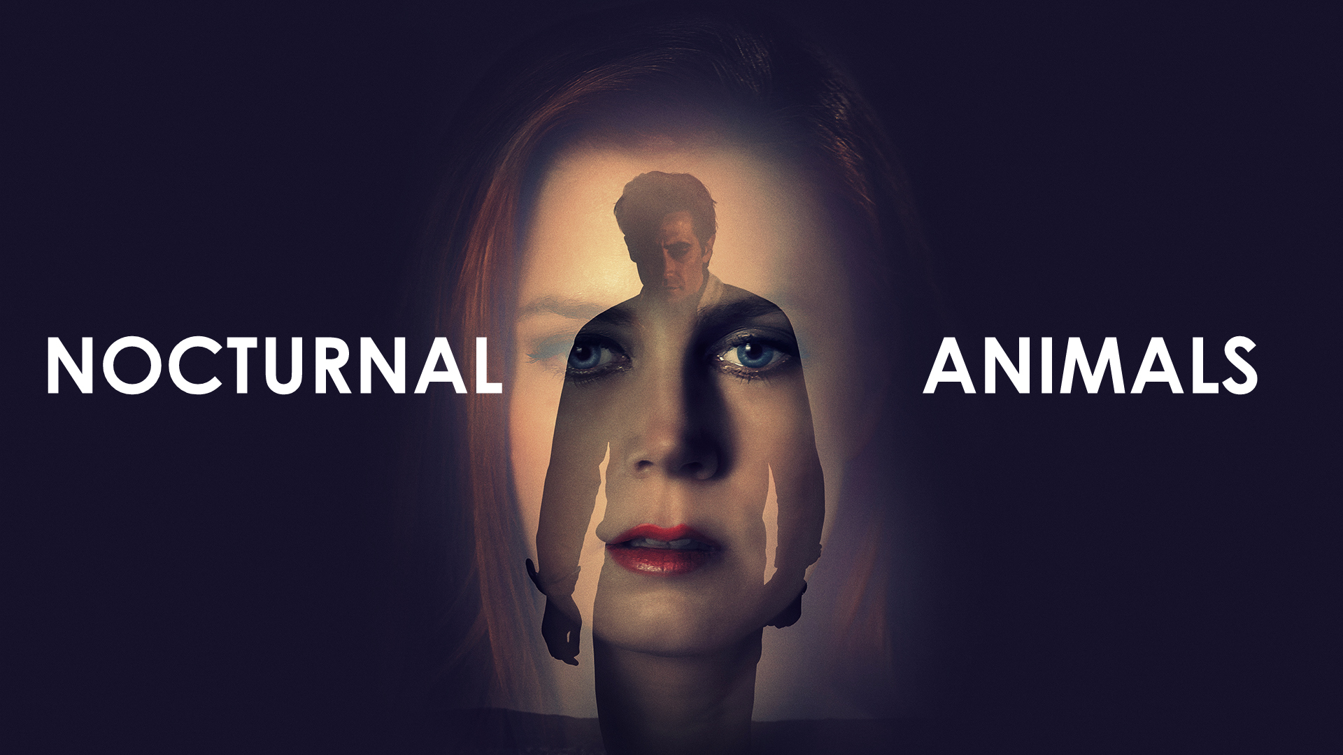 Amy Adams Nude In Nocturnal Animals nocturnal animals review (2016) | full analysis and ending